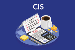 CIS-Short-Accountancy-Course